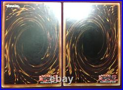 Yugioh Blue Eyes White Dragon LOB 001 1st Edition American English & RP01-EN01